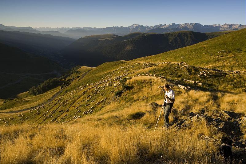 Midi-Pyrénées veut conserver sa biodiversité.