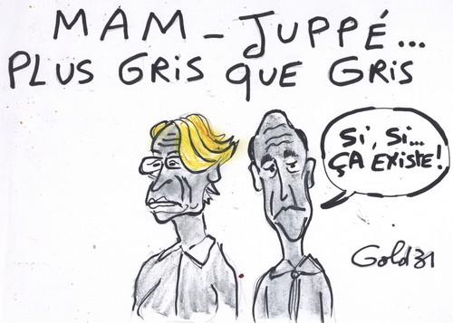 Européennes : la campagne grisâtre de Michèle Alliot-Marie